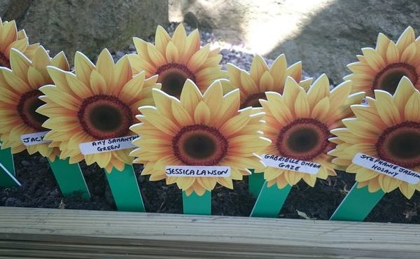 Sunflower Memories Appeal