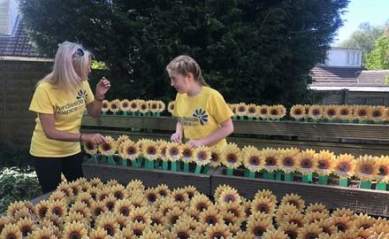 Sunflower Memories Appeal 2021